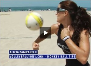 Alicia Zamparelli Monkey Ball