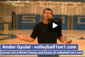 Beginner Volleyball Practice Plan 1 by Andor Gyulai
