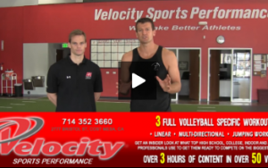 Information about Velocity Sports Performance