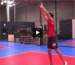Mike Diehl Volleyball Transition Hand Set
