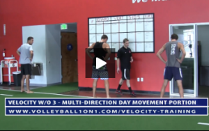 Movement Portion - Velocity Workout 3 - Multi-Directional