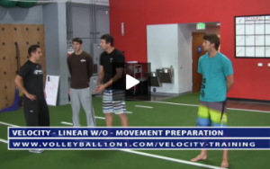 Movement Preparation - Velocity Volleyball Workout 1 - Linear