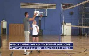 Volleyball-Spiking-Private-Lesson-with-Andor-Gyulai-4-11-15