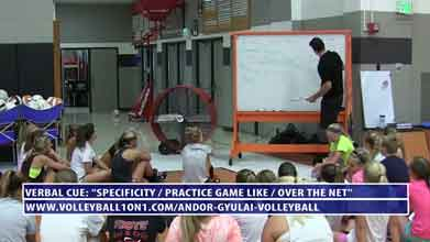 Volleyball-Verbal-Cue---Specificity-Make-it-Game-Like-and-Over-the-Net