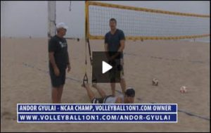 Volleyball1on1 TRX Core-Blasting Workout