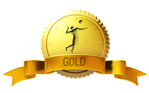 Volleyball1on1 Gold Membership
