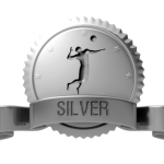 silver-seal-button