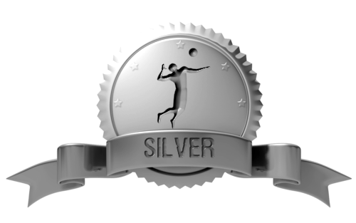 Volleyball1on1 Silver Membership