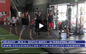 ESD Training - Battle Ropes - Double, Alternating and Butterfly Arm Swings