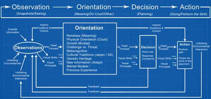 Grown-Mindset--OODA-Loop-Blueprint