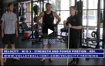 RDL and Core, Anti Rotation Stability -  Strength and Power Portion of Velocity Workout 3