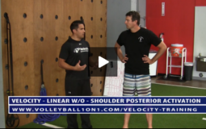 Shoulder Posterior Activation Using TRX - Y T W Exercises