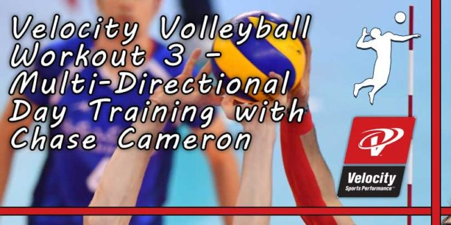 4763ac03e4d4 Velocity Volleyball Workout 3 – Multi-Directional Day Training with Chase  Cameron (14 Videos)