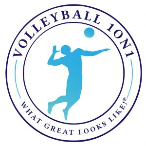 About Us – Volleyball1on1
